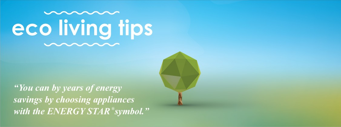 You can by years of energy savings by choosing appliances with the ENERGY STAR® symbol.